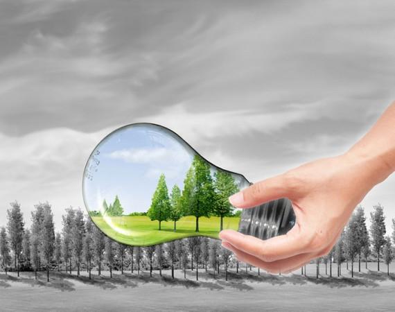 Заповед № РД-309/31.05.2016 г. на министъра на околната среда и водите